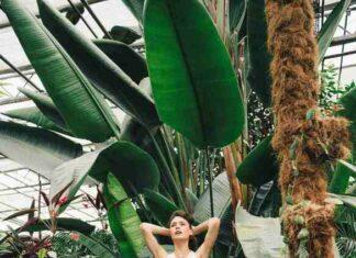 "kolekcja kapsułowa marki Renee ""Back to Nature"" (5)"